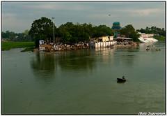 Bhavani - Kaveri river 3