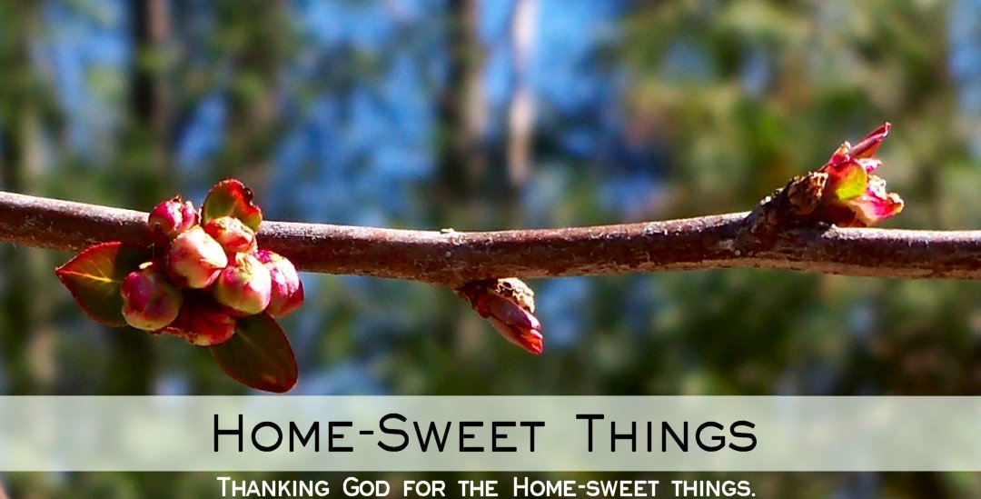 HOME-SWEET THINGS