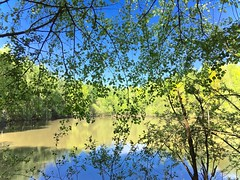 Lac du talus de Morteru