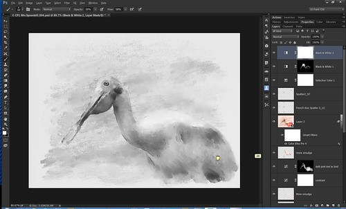 Screenshot of B&W image of roseate spoonbill bird