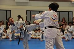 Blak belt Test (752)