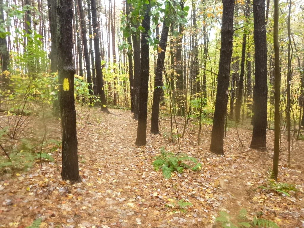 Keystone State Park, New Alexandria, Pennsylvania