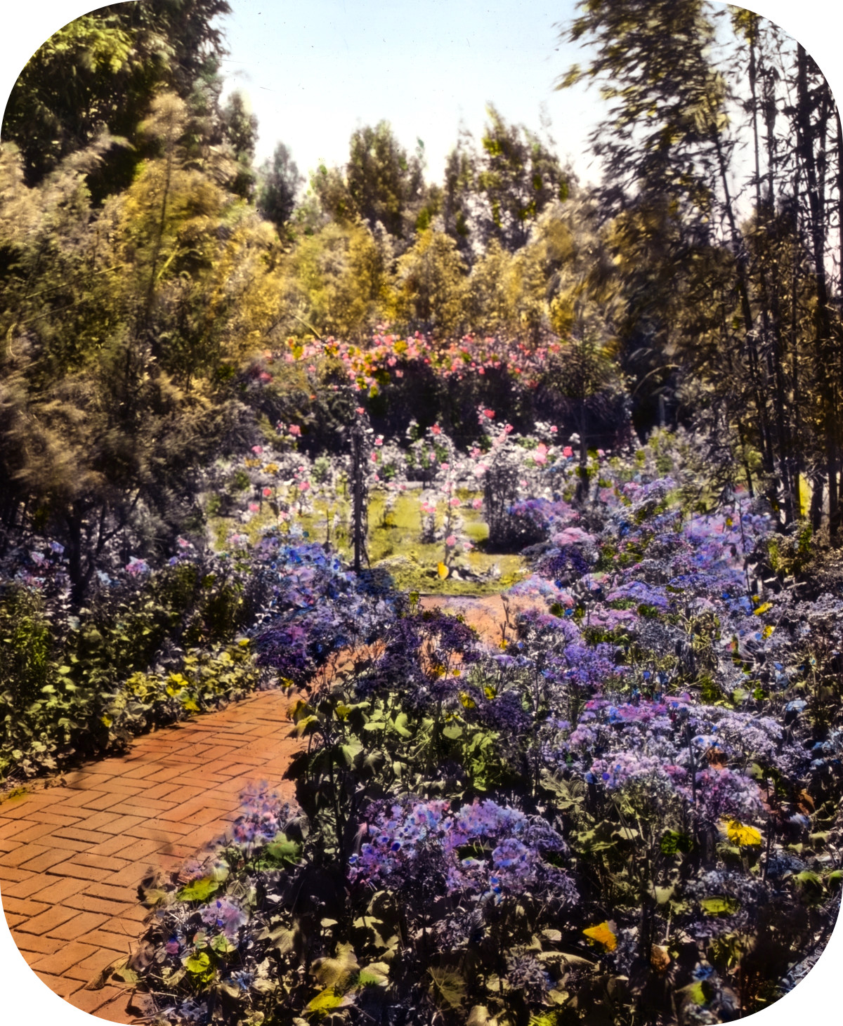 'Senuelo,' Edward Ditmars Wetmore house, 1050 Channel Drive, Montecito, California. Path to rose garden
