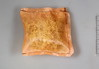 S. balticum litter packed in a polyethylene bag
