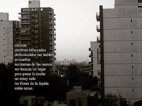 Autor: ldlsantos65