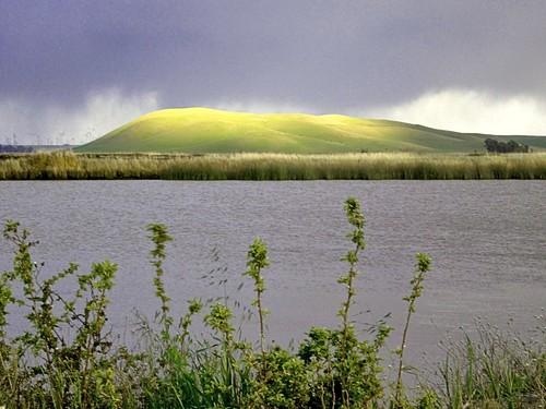 northerncalifornia fairfield solanocounty scenicsnotjustlandscapes grizzlyislandroad