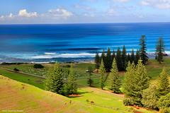 Looking Across Kingston Cemetery to Swells off Cemetery Beach, Norfolk Island