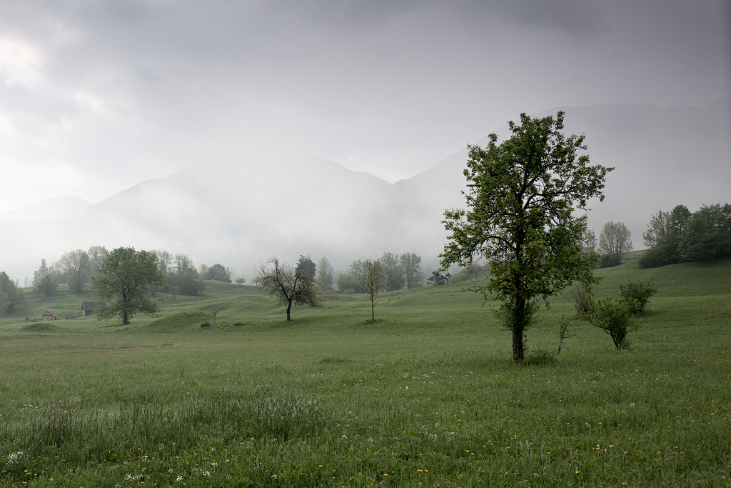 Словенский сельский пейзаж (Slovenia countryside)