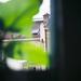 Small photo of Ambush