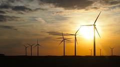 Wind turbines in Iowa at dusk