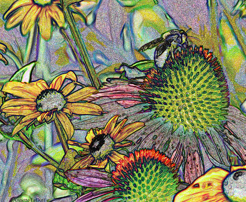 Just Pollinating