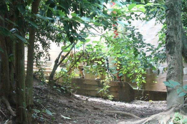 Atlanta Zoo '13, 14
