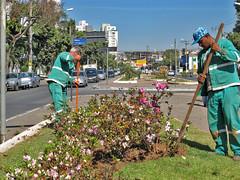 31/08/2013 - DOM - Diário Oficial do Município