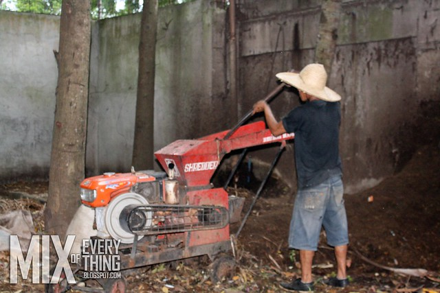 Bacolod Organic Farming