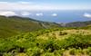Madeira #6 - Fuji X-T1
