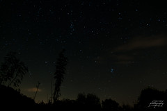Skynight - Photo of Belmont