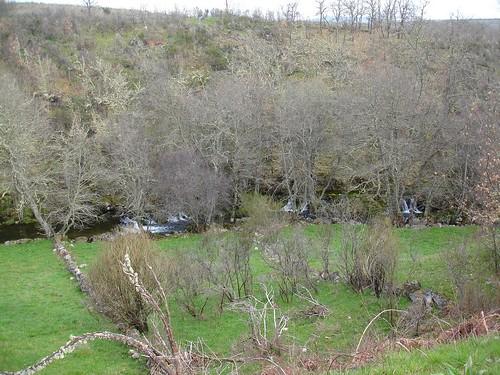 Rio Balsemão