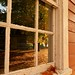 Leaves & Window (2) by deanspic