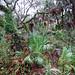 Hammock on a rainy morning by treegrow