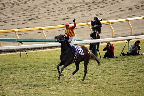20120219 フェブラリーS / February Stakes