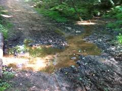 Kendall Creek