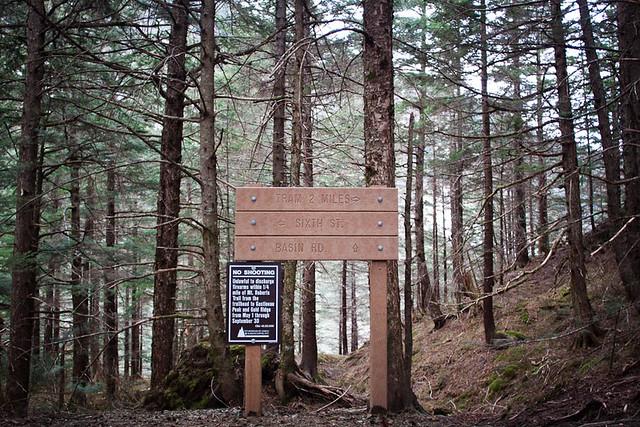 Mt Roberts Sign