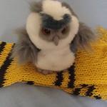 Hufflepuff scarf