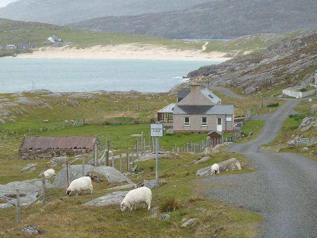 Rural Scene, Harris