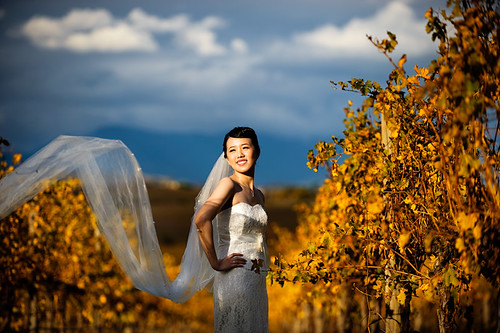 Kim Chin ~ Pre-wedding Photography
