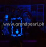 blacklight6.www.grandpearl.