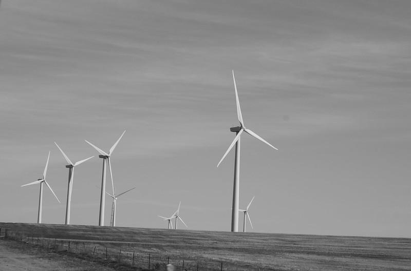Windfarm 6