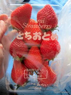 hokkaido-strawberry.jpg