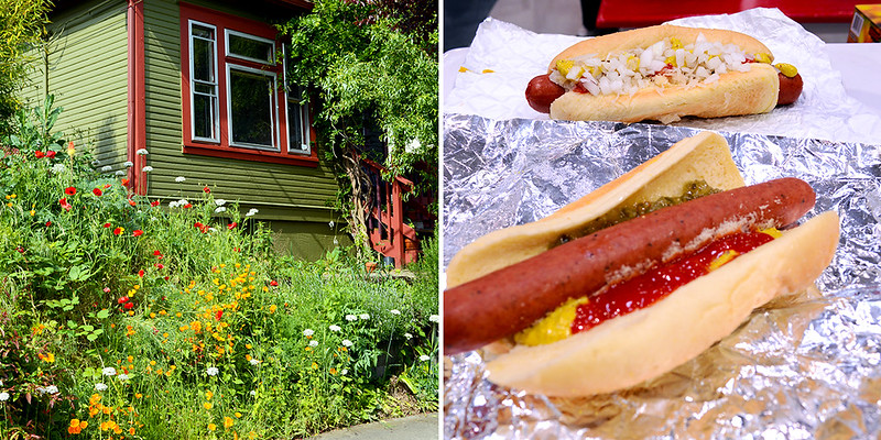 Home and Hotdogs