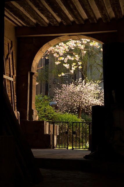 Le jardin secret flickr photo sharing for Le jardin secret
