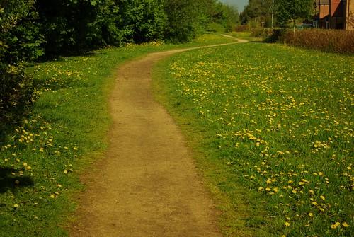 20130519-21_Cawston Grange - Perimeter Path - Bridleway