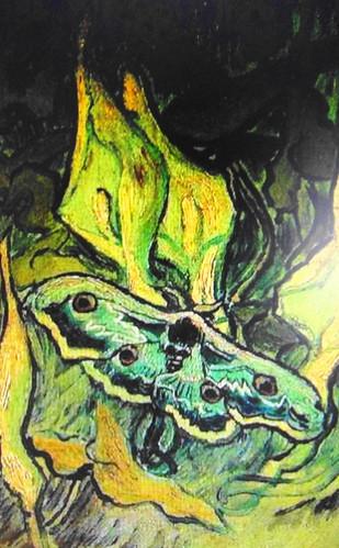 Pavón nocturno sobre barba de aron  Autor: Vincent Van Gogh