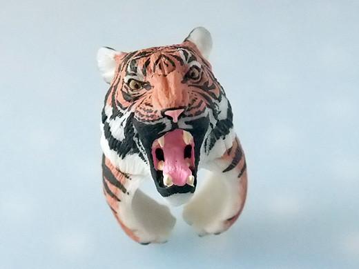 cling_tiger_2