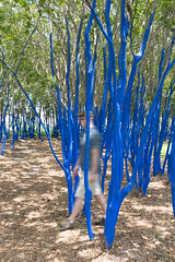 Ghostly 'Nathan in the blue trees