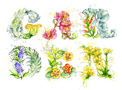 Edible Plants: GARDEN Typography