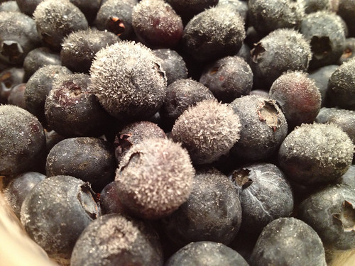 frozen blueberries by Digital Heather