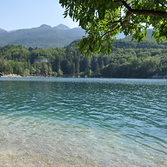 Second swimming spot of the day at Lake Bohinj