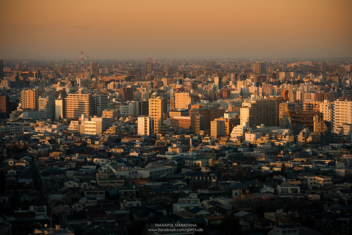 Tokyo city in the dawn