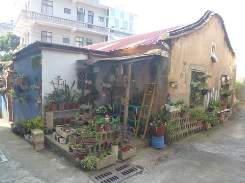 Taiwan-Kincheng-Ville (23)