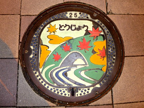 Tojo Hiroshima, manhole cover 2 (広島県東城町のマンホール2)
