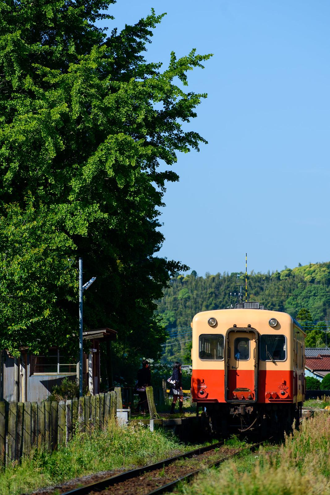 新緑の小湊鐡道・いすみ鉄道