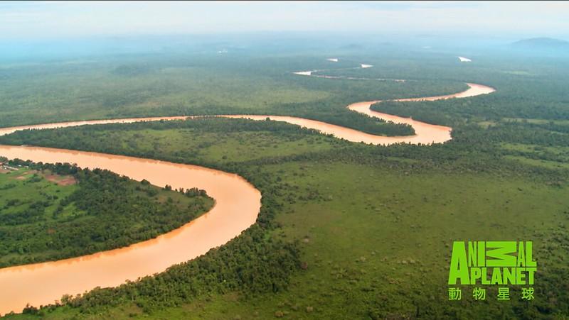 【馬來西亞京那峇河】故事下篇:馬來西亞京那峇昔加末國際濕地
