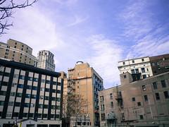Downtown detroit skyline
