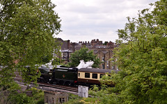 Steam in Balham