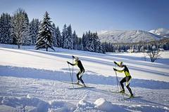 Ramsau am Dachstein - Eldorádo běžeckého lyžování vRakousku