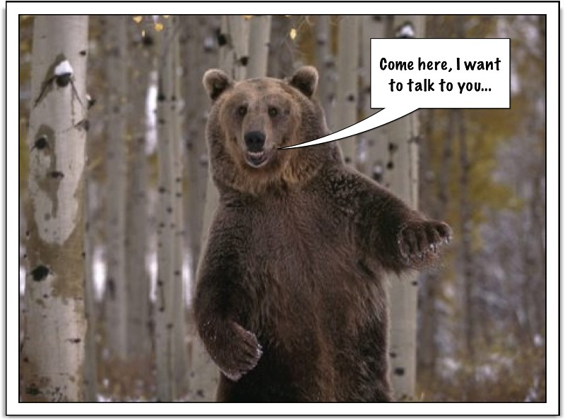 MARKET BEAR SAYS...